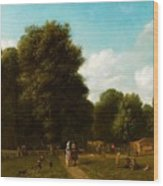 A View Of The The Haarlemmerhout Wood Print