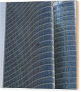 Abu Dhabi The Miracle Wood Print