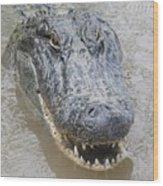 Alligator Wood Print