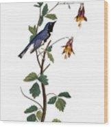 Audubon: Warbler, (1827-38) Wood Print