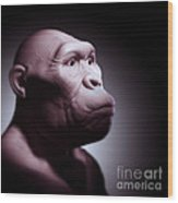 Australopithecus Wood Print