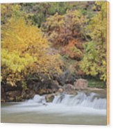 Autumn Foliage In Zion National Park Wood Print