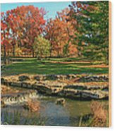 Autumn In Forest Park St Louis Missouri Wood Print