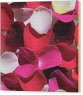 Back Lit Flower Petals 1 Wood Print