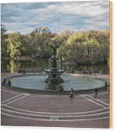 Bethesda Fountain Wood Print