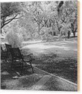 Botanic Garden Wood Print