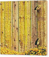 California Golden Poppies Eschscholzia Wood Print