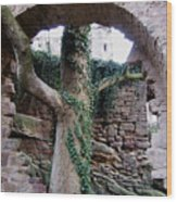 Castle Ruin Noerten-hardenberg Wood Print