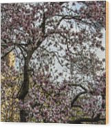 Central Park Spring Wood Print