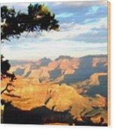 D C Landscape Wood Print