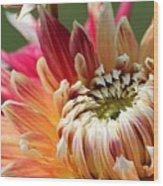Dahlia Named Akita Wood Print