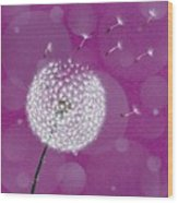 Dandelion Flying Wood Print