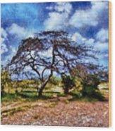 Desertic Tree Wood Print