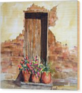 Door With Pots Wood Print