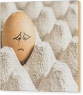 Eggs Have Feelings Too Wood Print