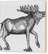 Elk/moose Wood Print
