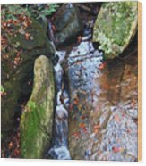 4 Faces In The Water Wood Print