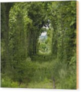 Famous Tunnel Of Love Location Wood Print
