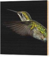 Female Ruby-throated Hummingbird Wood Print