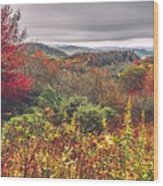 Graveyard Fields Overlook In The Smoky Mountains In North Caroli Wood Print