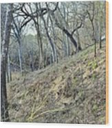 Hill Country Wood Print