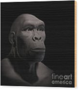 Homo Habilis Wood Print