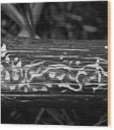 4 Wood Print