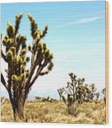 Joshua Tree Desert Wood Print