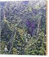 Kauai Water Fall Wood Print