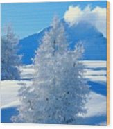 Landscape Light Wood Print