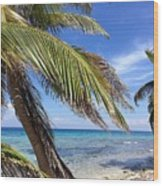 Laughing Bird Caye Wood Print