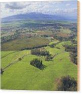 Maui Aerial Wood Print