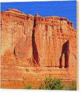 Moab Landscape Wood Print