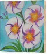 4 Morning Glories Flowers  Wood Print