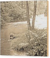 Mud Run Pocono Mountain Stream Pennsylvania Wood Print