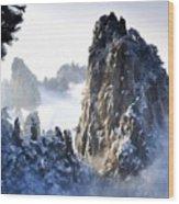 Native Landscape Wood Print
