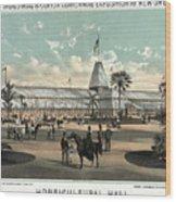 New Orleans, Fair, 1884.  Wood Print