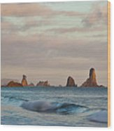 Olympic Peninsula Coast Wood Print