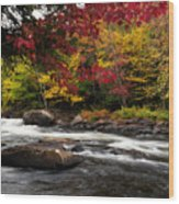 Ontario Autumn Scenery Wood Print