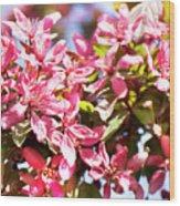 Pink Cherry Flowers Wood Print