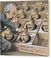 Presidential Campaign, 1880 Wood Print