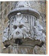 Public Fountain In Dubrovnik Croatia Wood Print