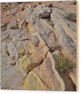 Rainbow Of Color In Valley Of Fire Wood Print