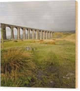 Ribblehead Viaduct Wood Print