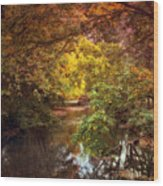 River View Wood Print