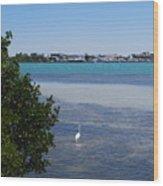 Sarasota Bay Wood Print