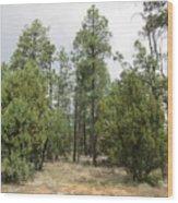 Show Low Landscape Wood Print
