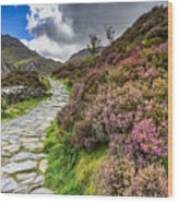 Snowdonia National Park - Wood Print