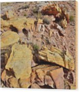 Splash Of Color In Valley Of Fire Wood Print