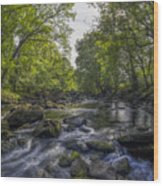 Summer River Wood Print